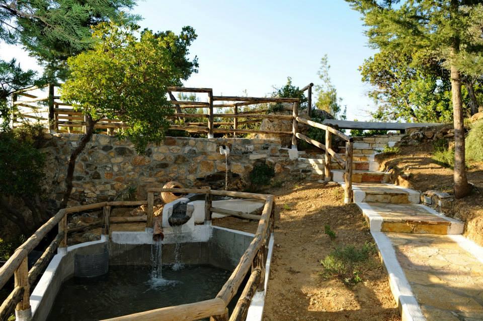 Kos Natural Park in Zia Village Has a Small Zoo