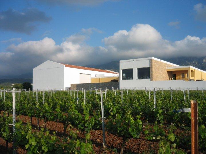 Triantafillopoulos vineyards
