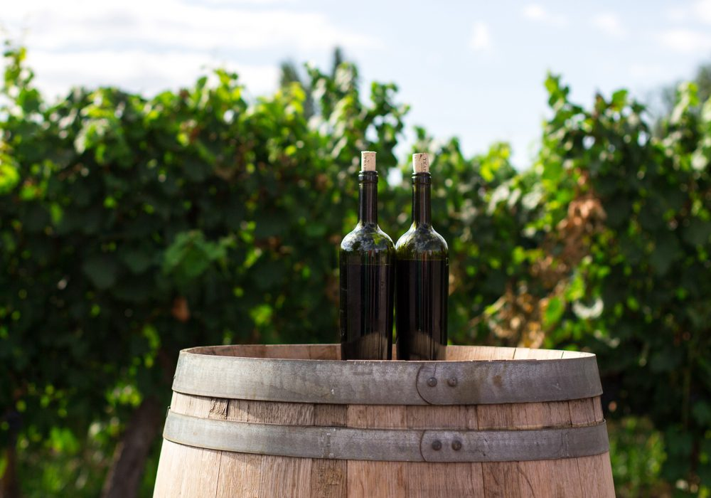 Visit the wineries of Kos