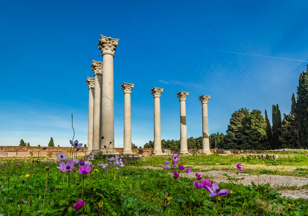Top 10 Kos: what to do and see if you visit Kos for the first time